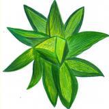 Heilbilder /Heilkristall gehüllt in Heilende Blume