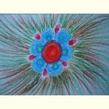 Blumen /Farbenkraft
