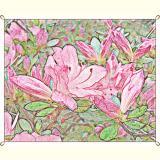Formen, Farben /Floral / 09