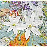 Formen, Farben /Floral / 06