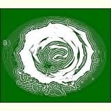 Formen, Farben /Florale Form / 20