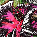 Formen, Farben /Floral / 02