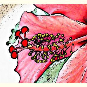Formen, Farben /Floral / 03