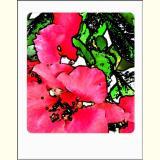 Formen, Farben /Floral / 04