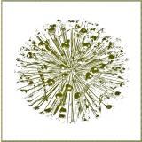 Formen, Farben /Florale Form / 26